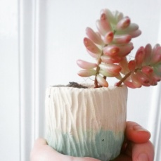 wheel thrown, hand carved and slip decorated mini plant pot. Jensmithceramics